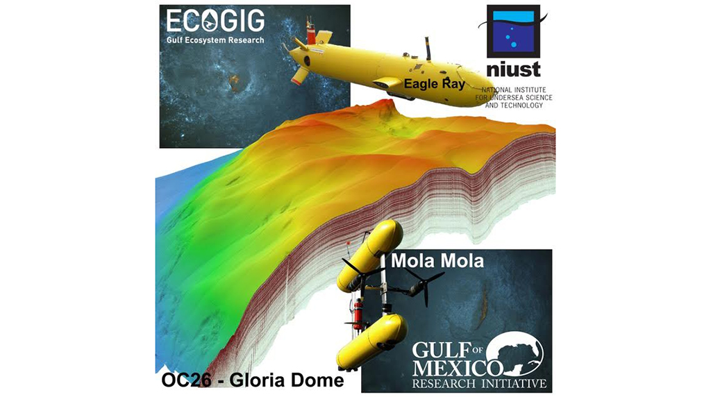 Study characterizes natural deep sea seeps