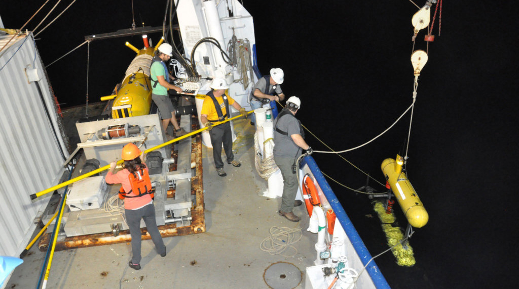Study Describes Seabed Conditions at Oil and Gas Seep Site in Gulf of Mexico