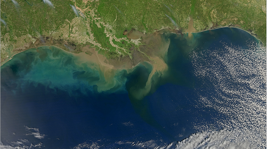 Highly variable nutrient concentrations measured in the Northern Gulf of Mexico
