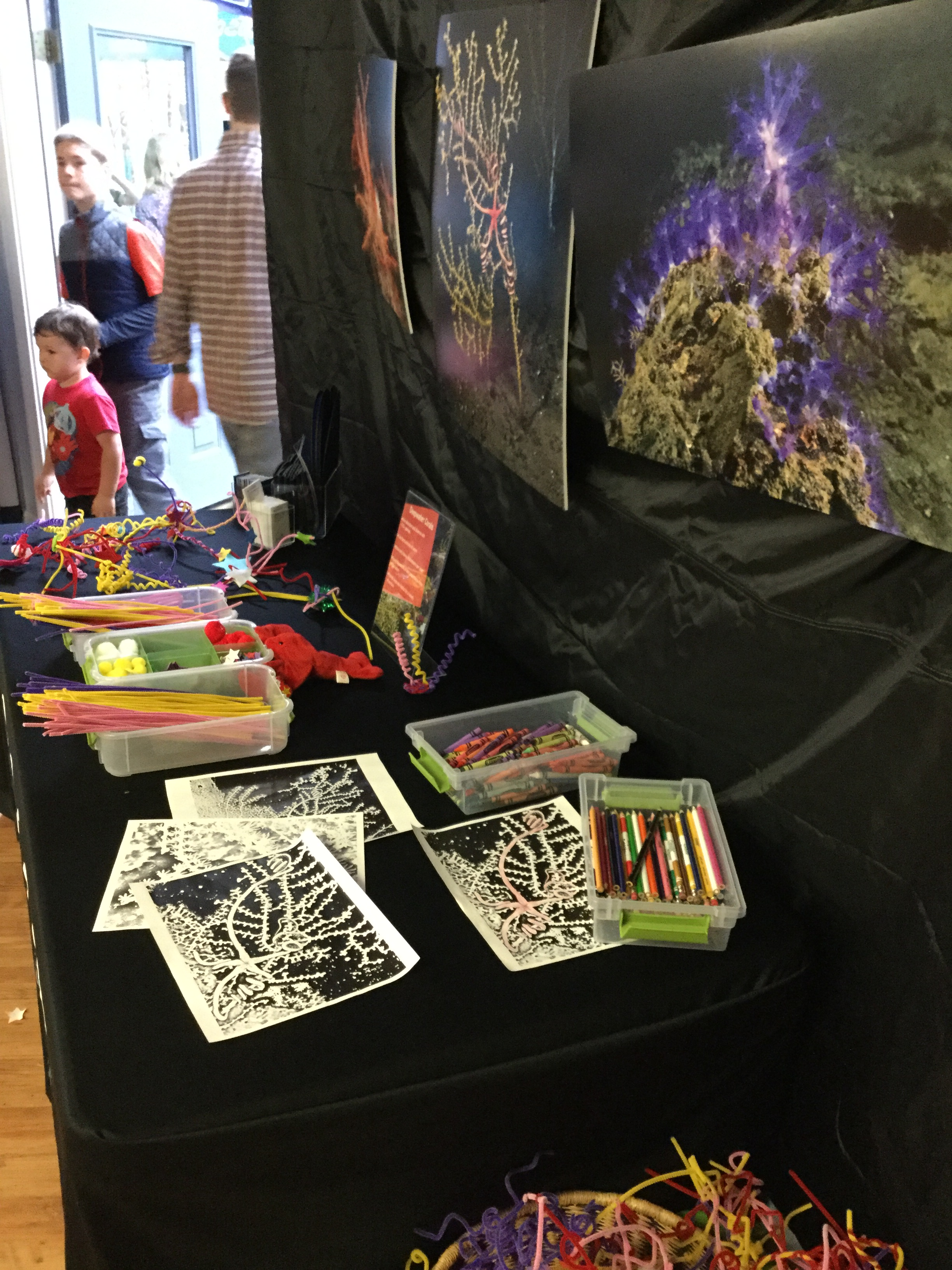 <div style='color:#000000;'><br /><br /><h2>Athens Montessori Fall Festival 2015. Build, draw, learn about deep sea coral station</h2>(C)&nbsp;ECOGIG</div>