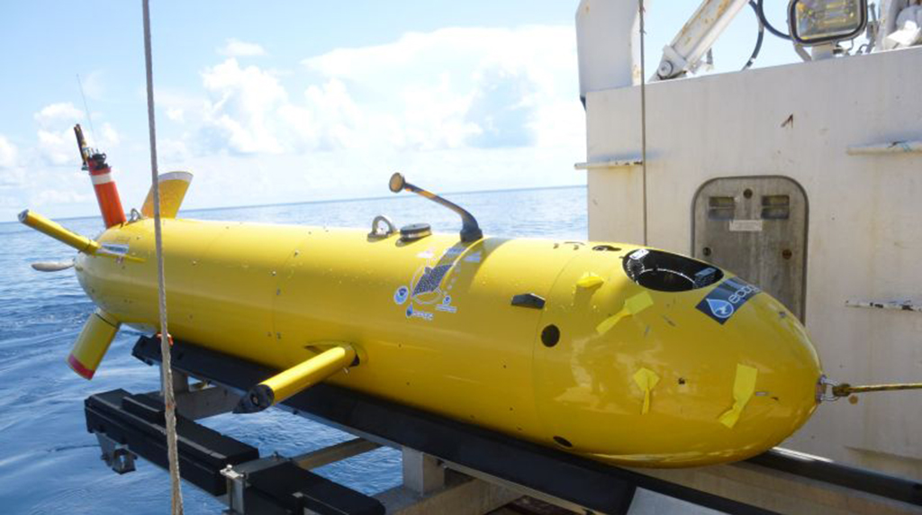 <div style='color:#000000;'><br /><br /><h2>Eagle Ray is a torpedo-shaped autonomous underwater vehicle (AUV) with a depth rating of 2200 meters. It is used to perform multibeam sonar surveys 50 to 15 meters above the seafloor.</h2>(C)&nbsp;ECOGIG</div>